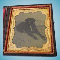 Recumbent Dog Tintype Cased 1/6 Plate