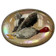 Edwardian Pheasant Brooch Reverse Painted Intaglio, Sterling Silver