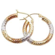 14k Gold Tri-Color Hoop Earrings