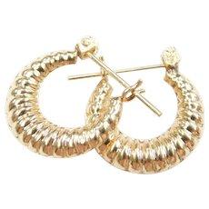 Small Scalloped Hoop Earrings 14k Gold