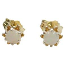 Opal .32 ctw Flower Stud Earrings 14k Gold
