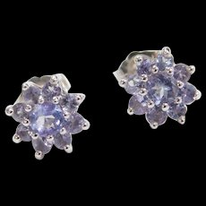 Vintage 14k White Gold .96 ctw Iolite Flower Stud Earrings