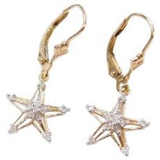 .11 ctw Diamond Star Earrings 10k Gold Two-Tone