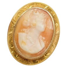 Edwardian 10k Gold Carved Shell Cameo Pin / Brooch