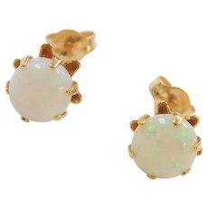 14k Gold .80 ctw Opal Buttercup Stud Earrings