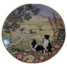 English Bone China Decorative Plate: Australian Shepherds