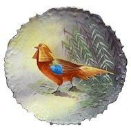 Blakeman & Henderson (B&H) Limoges Golden Pheasant Game Plate