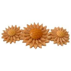 Vintage Triple 3D Spikey BAKELITE Flowers with Center Flower Head Pin