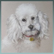 Pastel Study of a Poodle by Much Listed Elizabeth Bridge Mid 20thC
