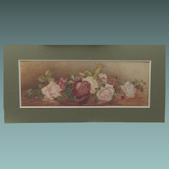 ANTIQUE English 2 FEET LONG Watercolour Painting of  ROSES Flowers 1902