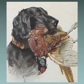 Antique English Retriever Dog Watercolour Painting Pheasant