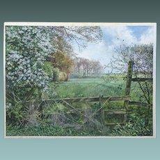 Martin Taylor 1954 Watercolour/gouache/Acrylic Painting of Langlands Plantation, Gt Brington, Northamptonshire