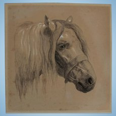 Fabulous Antique English Drawing Graphite Pencil Study of a Horse Portrait