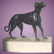 Antique Bronze sculpture of a Greyhound Dog on Marble Base. c. 1900