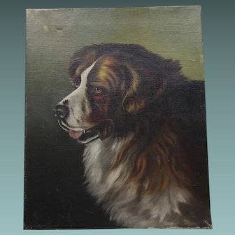 Antique Oil Painting Portrait/Study of a Newfoundland  St Bernard Dog, Bernese Mountain Dog c.1900