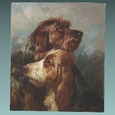 Otter Hounds Dogs ( no. 2 of a Pair) by Colin Graeme Roe 1892 Oil Painting on Canvas Antique English