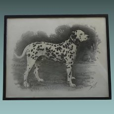 RARE Portrait of a Dalmatian Dog in Graphite Pencil & Wash Painting 1937 by Marks