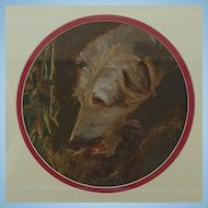 Portrait Study of a Wolf Hound Dog or Lurcher English School Oil Painting c.1920s
