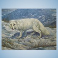 Beautiful Canadian Arctic Fox by Arthur Spencer Roberts (1920-1977) Oil Painting