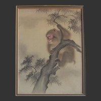 Antique Portrait of A Japanese Monkey - Colour on Laid Silk c.1910