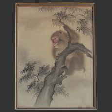 Antique Portrait of A Japanese Monkey - Colour on Laid Silk c.1910