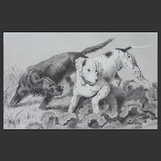 """Pointer and Setter"" Dog Antique Steel Engraving Sir Edwin Landseer"