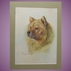 Lucy Dawson Original Watercolour Watercolor Painting of a Chinese Chow Dog