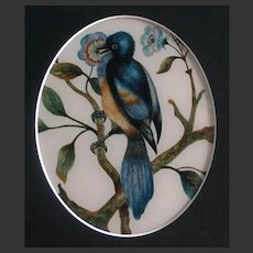 Antique English Painting of a Song Bird