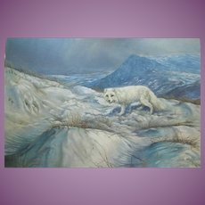 CANADIAN Arctic Fox Painting Unframed by Arthur Spencer Roberts (1920-1977) FREE USA/CANADA SHIPPING