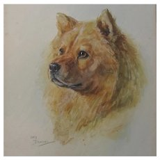 Study of a CHOW Dog by Lucy Dawson 1867-1954 Watercolour Painting c.1900-1920