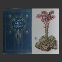 A BEAUTIFUL Binding 'Plant Life' Antique Book A & C Black 1915 C Hall 50 coloured drawings 24 photos and etc.