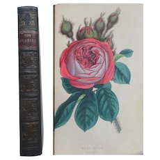 Antique Book 1848 'The Florist' 15 Beautiful Hand-Coloured Plates January-December