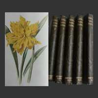 FIVE Antique Vols 1885 'Familiar Garden FLOWERS' 200 Chromolithographic Coloured Plates Hulme Text Hibbered