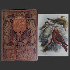 A BEAUTIFUL BINDING - Antique Book 'Birds of Britain' 100 x watercolours by Dresser - Text Bonhote
