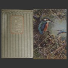 ANTIQUE Book 'Egyptian Birds' Charles Whymper 1909 51 glorious watercolours A C Black
