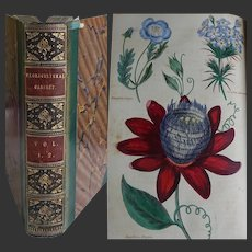 VOL I-II of The 'Floricultural Cabinet & Florists Magazine' 1834-5 27 Hand Painted Illustrations flowers