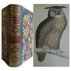 Antique Book 'A History of British Birds' Vol I Rev Morris 43 Hand coloured engravings - Vultures Owls, Eagles Hawks Etc.