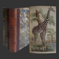 ANTIQUE BOOK 1843 Naturalist's Library Vol III Deer Antelope Camels etc! 31 Hand coloured Plates