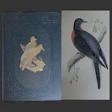 6 Vols 1870 History of British Birds 365 x Hand Coloured Plates Rev F O Orpen Excellent Condition