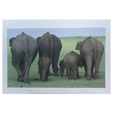 Elephant Family Going to Drink in S. India Hi Quality Giclee print signed by the photographer