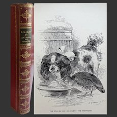 Antique Book Fine Leather Binding 1897 'stories of the Sagacity of Animals' WHG Kingston 27 x illustrations Harrison Weir  T Nelson