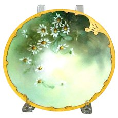 Pickard Plate with Daisies