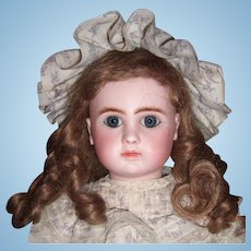 """16"""" Steiner Antique Doll with Mint Antique Dress/Shoes Layaway"""