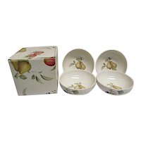 NEW Old Stock Mikasa Maxima Belle Terra Set of 4 Cereal Soup Bowls in Box CAJ05