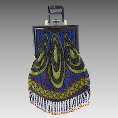 Beaded Purse with Celluloid Handle Frame