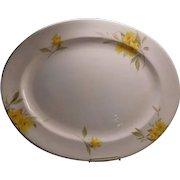 """Shelley China Pattern"""" Primrose"""" very large Platter"""