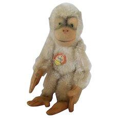 1950's Steiff Larger White Jocko Chimp