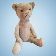 Wonderful Vintage 1920's Mohair Teddy Bear