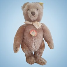 1940's Steiff Mohair Teddy Bear All I.D. 11""