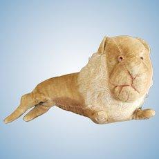 Early 1900's Velvet Mohair Lion with Glass Eyes